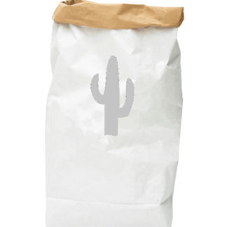 PAPER-BAG-cactus-grey